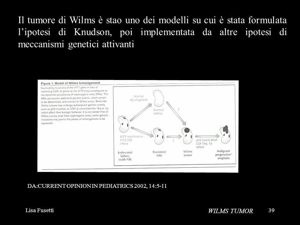 Il tumore di Wilms è stao uno dei modelli su cui è stata formulata l'ipotesi di Knudson, poi implementata da altre ipotesi di meccanismi genetici attivanti