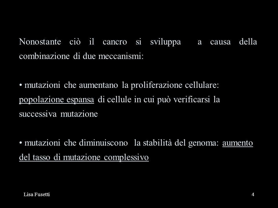 Nonostante ciò il cancro si sviluppa a causa della combinazione di due meccanismi: