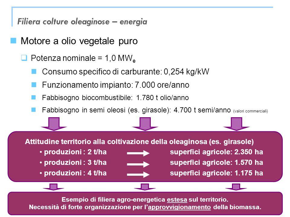 Filiera colture oleaginose – energia