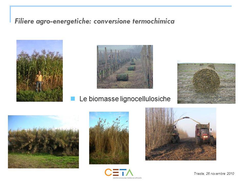 Filiere agro-energetiche: conversione termochimica