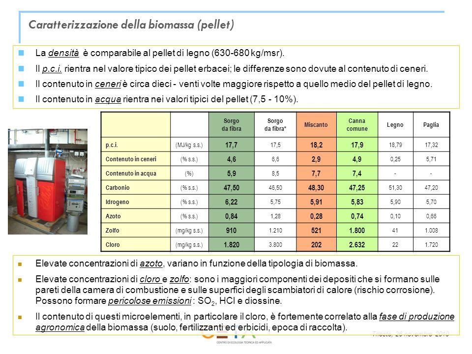 Caratterizzazione della biomassa (pellet)