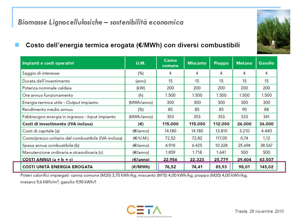 Biomasse Lignocellulosiche – sostenibilità economica