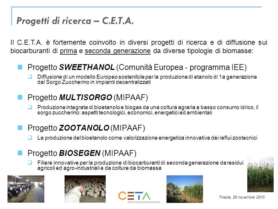 Progetti di ricerca – C.E.T.A.