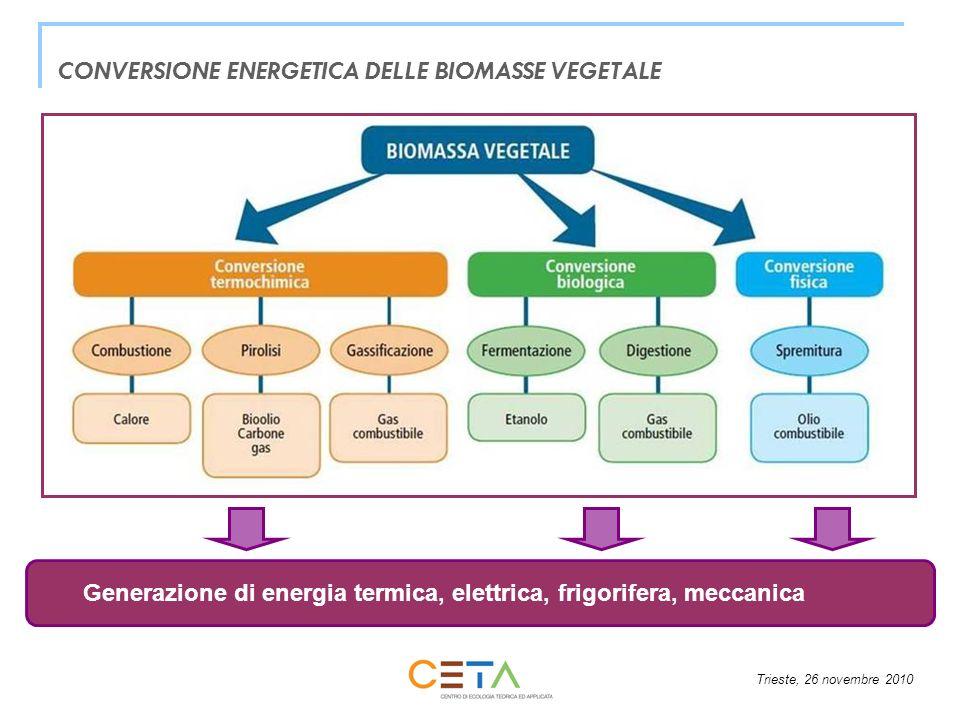 CONVERSIONE ENERGETICA DELLE BIOMASSE VEGETALE