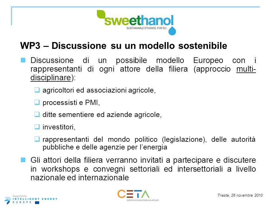 WP3 – Discussione su un modello sostenibile