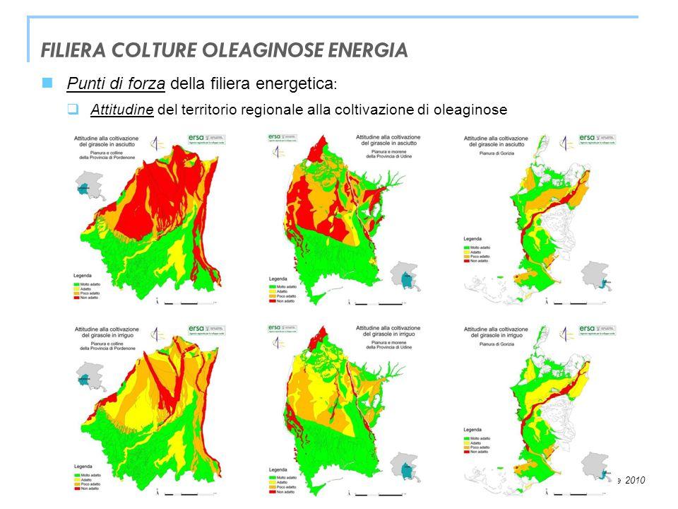 FILIERA COLTURE OLEAGINOSE ENERGIA
