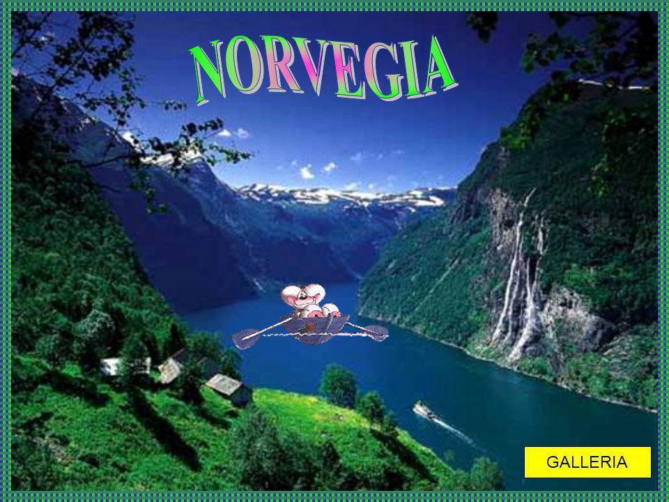 NORVEGIA GALLERIA