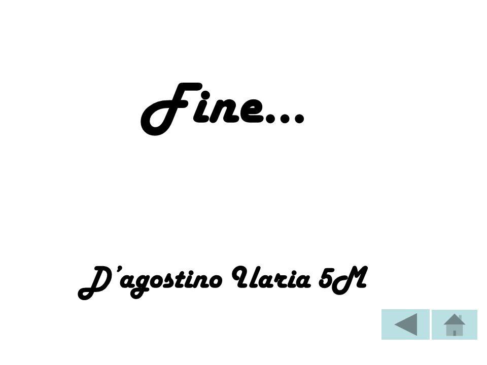 Fine… D'agostino Ilaria 5M