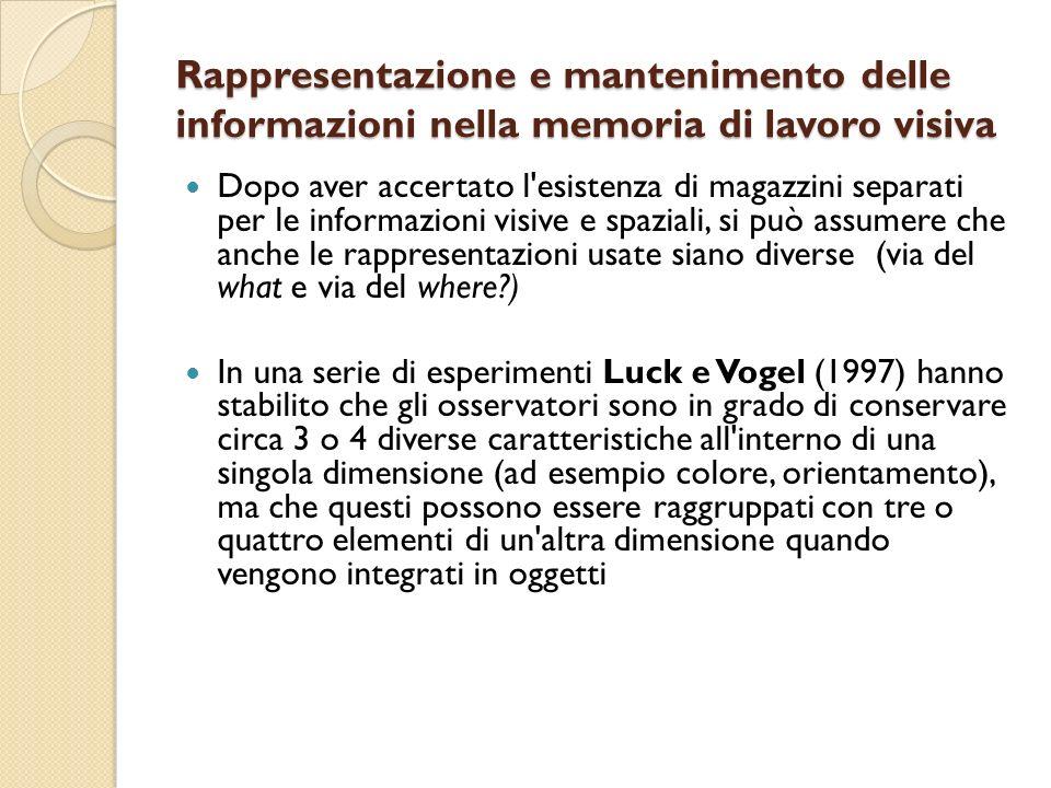 Rappresentazione e mantenimento delle informazioni nella memoria di lavoro visiva
