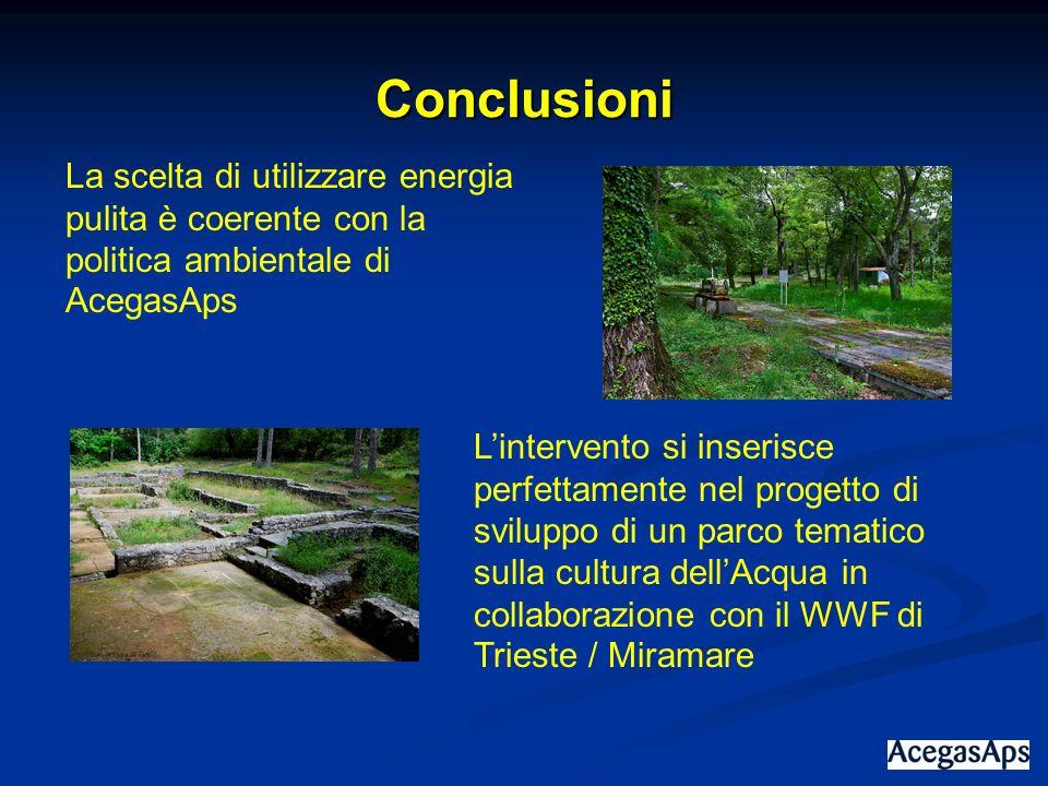 Conclusioni La scelta di utilizzare energia pulita è coerente con la politica ambientale di AcegasAps.