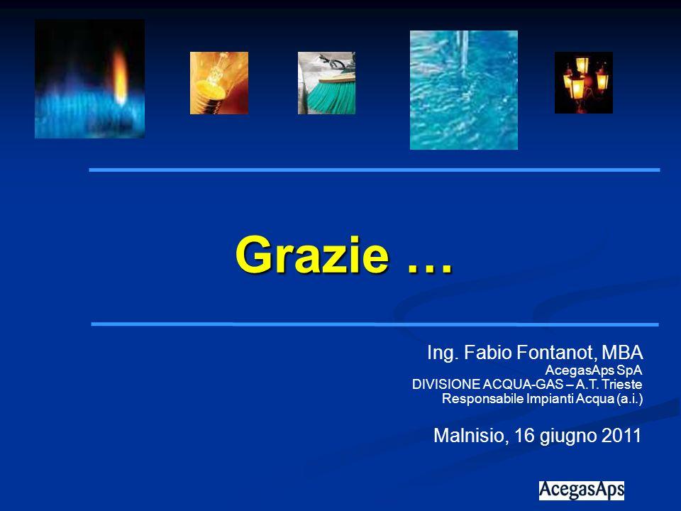 Grazie … Ing. Fabio Fontanot, MBA Malnisio, 16 giugno 2011