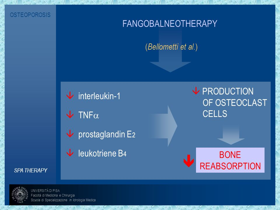 OSTEOPOROSISFANGOBALNEOTHERAPY. (Bellometti et al.)  PRODUCTION. OF OSTEOCLAST. CELLS.  interleukin-1.