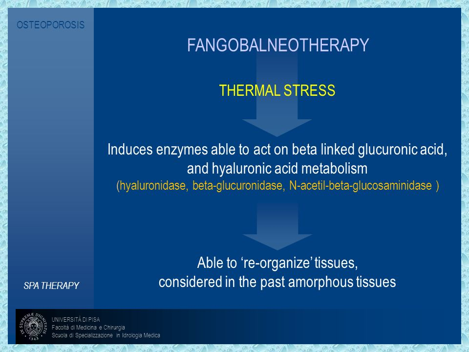 OSTEOPOROSIS FANGOBALNEOTHERAPY. THERMAL STRESS. Induces enzymes able to act on beta linked glucuronic acid, and hyaluronic acid metabolism.