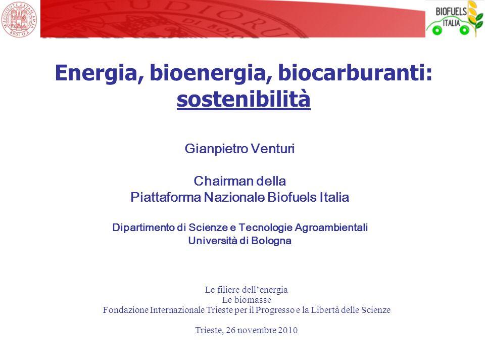 Energia, bioenergia, biocarburanti: sostenibilità