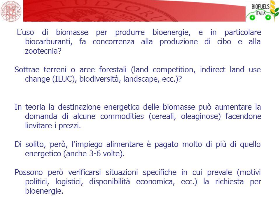 L'uso di biomasse per produrre bioenergie, e in particolare biocarburanti, fa concorrenza alla produzione di cibo e alla zootecnia