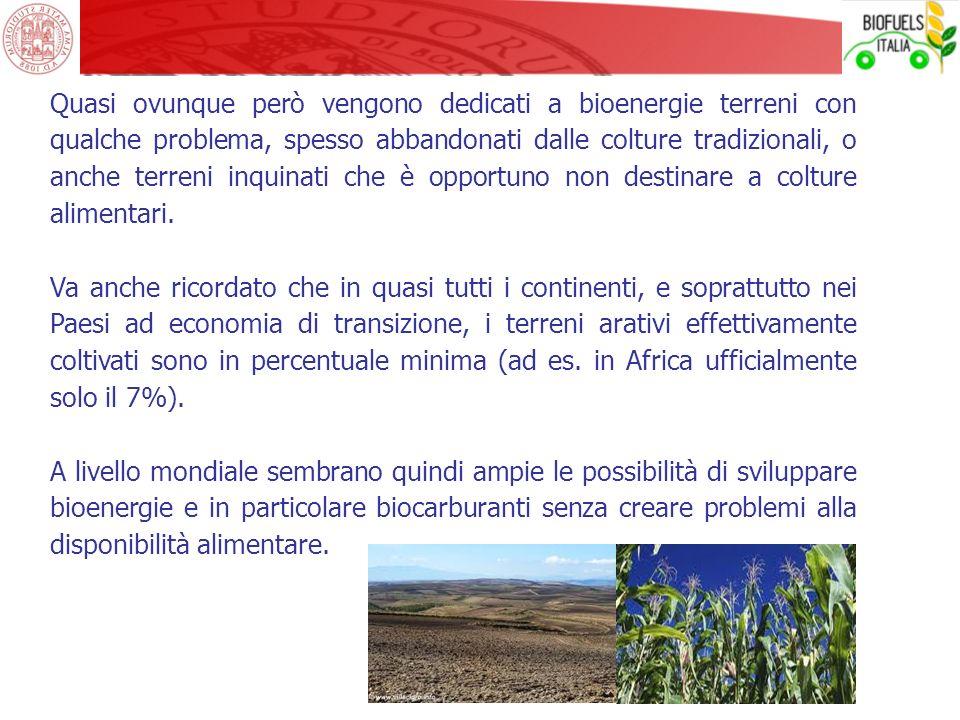 Quasi ovunque però vengono dedicati a bioenergie terreni con qualche problema, spesso abbandonati dalle colture tradizionali, o anche terreni inquinati che è opportuno non destinare a colture alimentari.