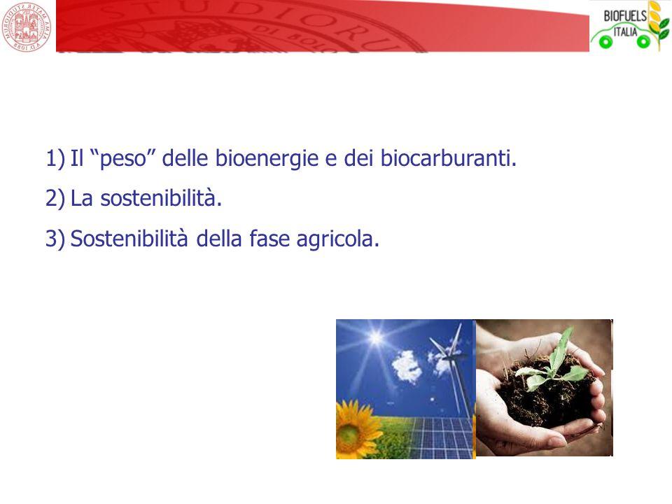 Il peso delle bioenergie e dei biocarburanti.