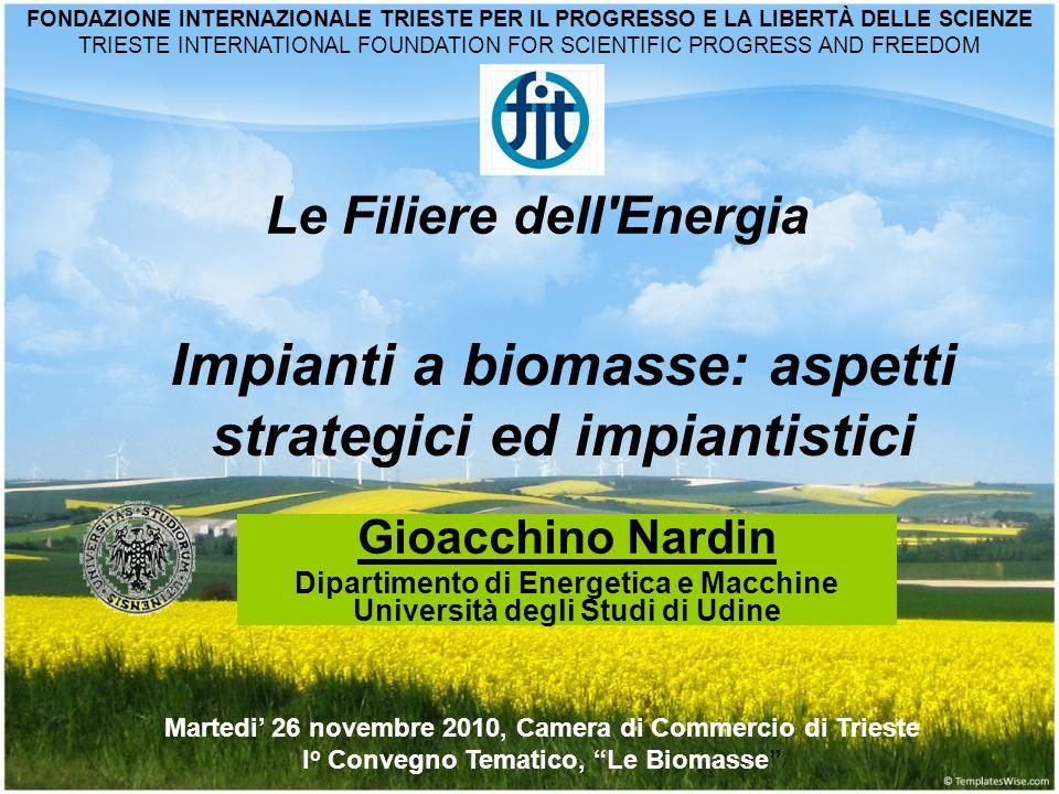 Impianti a biomasse: aspetti strategici ed impiantistici