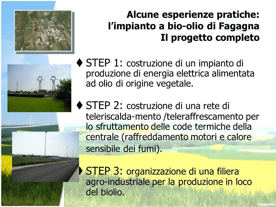 Alcune esperienze pratiche: l'impianto a bio-olio di Fagagna Il progetto completo