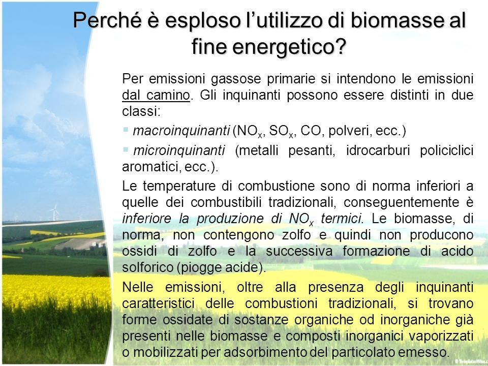Perché è esploso l'utilizzo di biomasse al fine energetico