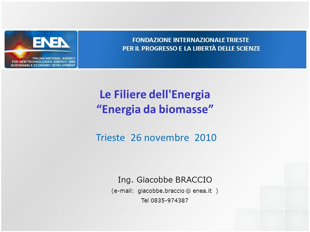 Le Filiere dell Energia Energia da biomasse