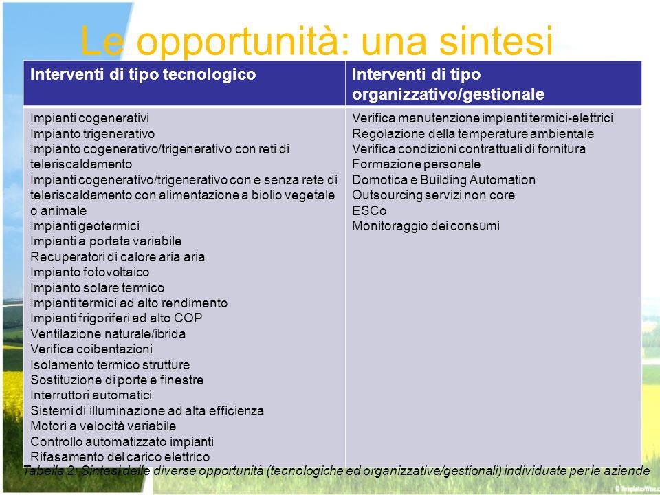 Le opportunità: una sintesi