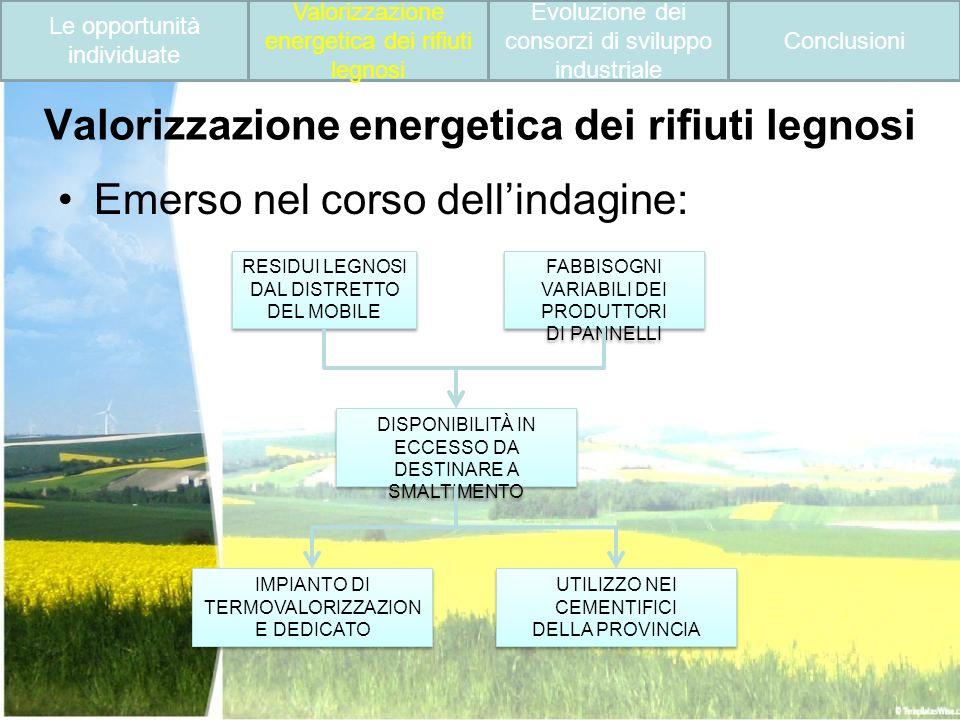 Valorizzazione energetica dei rifiuti legnosi