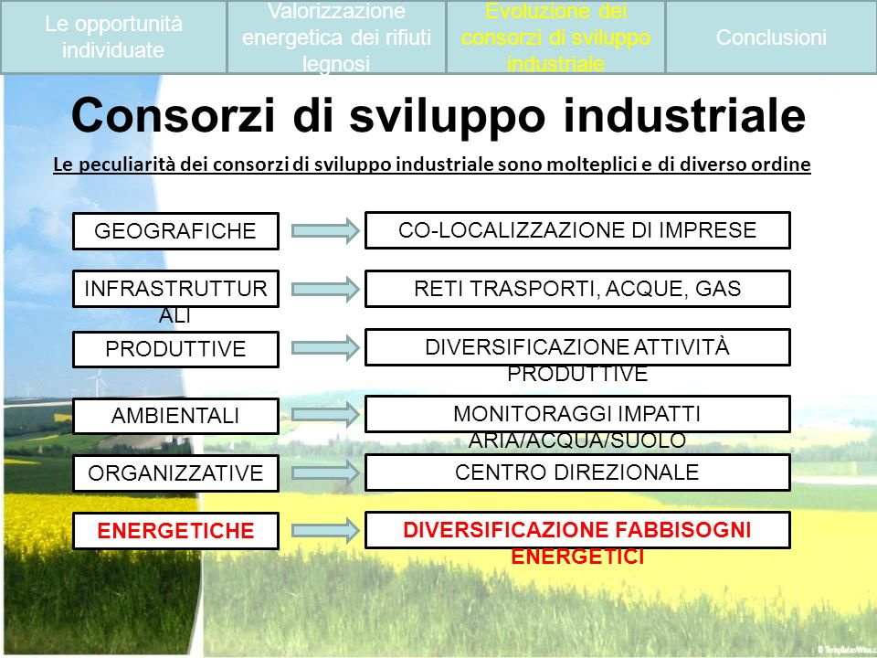 Consorzi di sviluppo industriale
