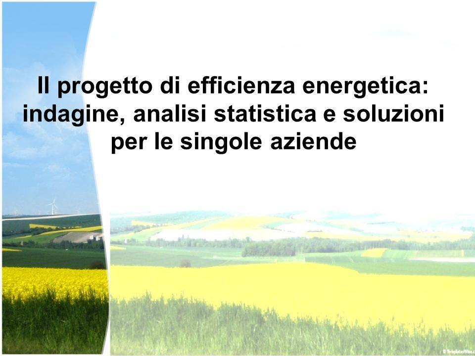 Il progetto di efficienza energetica: indagine, analisi statistica e soluzioni per le singole aziende