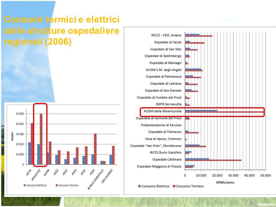 Consumi termici e elettrici delle strutture ospedaliere regionali (2006)