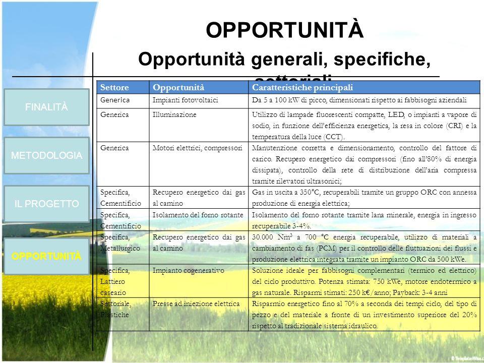 Opportunità generali, specifiche, settoriali
