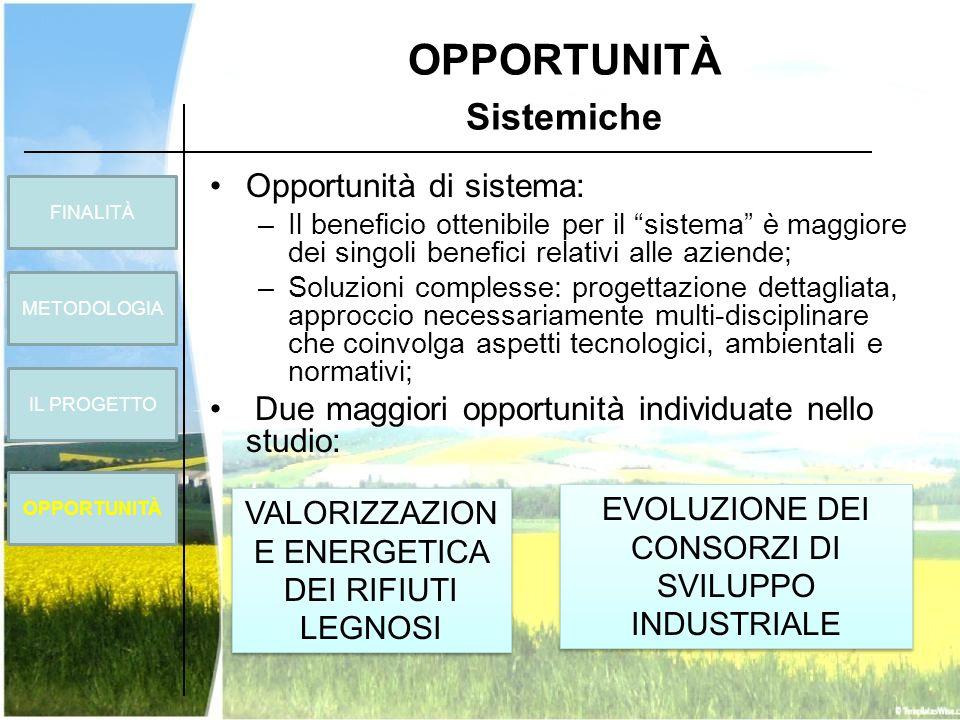 OPPORTUNITÀ Sistemiche Opportunità di sistema: