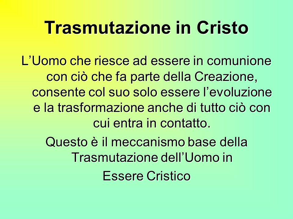 Trasmutazione in Cristo