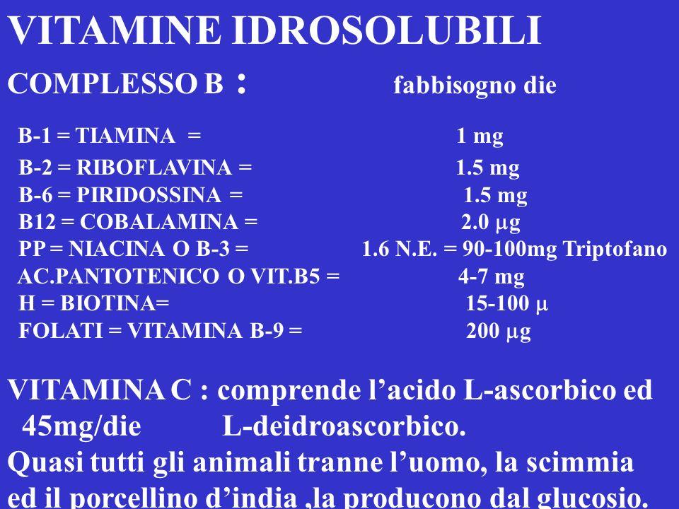 VITAMINE IDROSOLUBILI B-1 = TIAMINA = 1 mg
