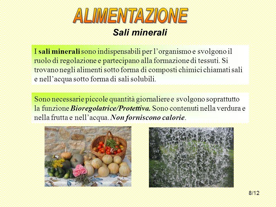 ALIMENTAZIONE Sali minerali