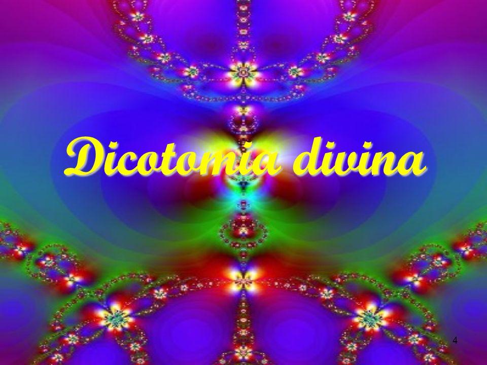 Dicotomia divina