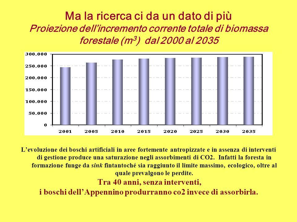Ma la ricerca ci da un dato di più Proiezione dell'incremento corrente totale di biomassa forestale (m3) dal 2000 al 2035
