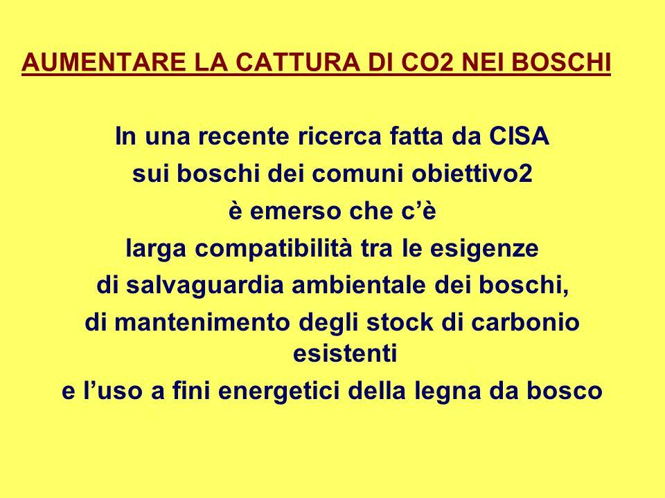 AUMENTARE LA CATTURA DI CO2 NEI BOSCHI