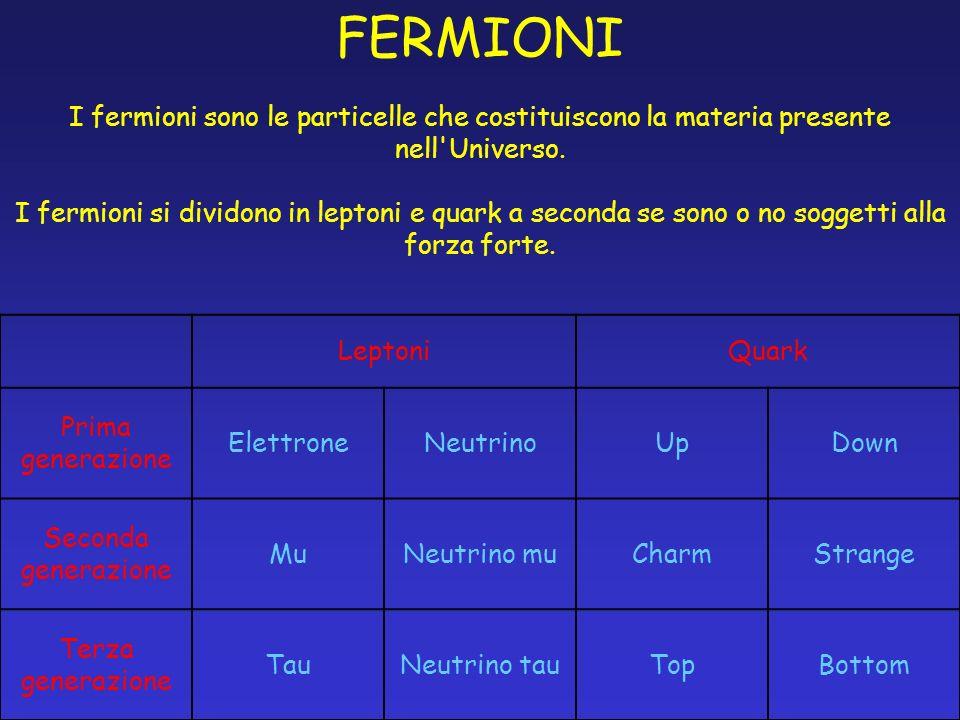 FERMIONI I fermioni sono le particelle che costituiscono la materia presente nell Universo.