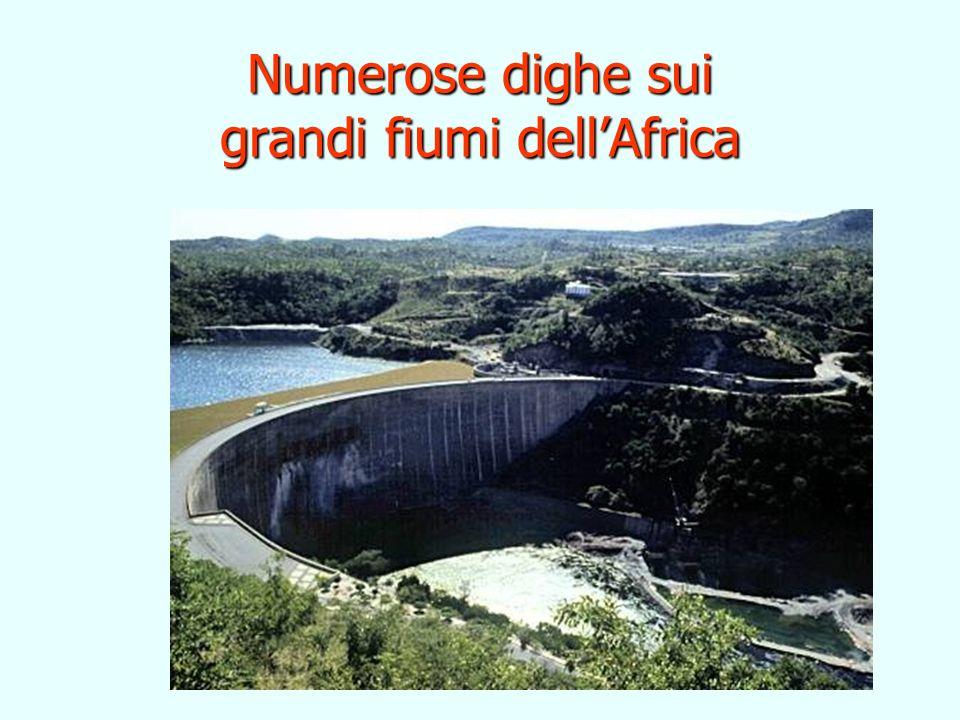 Numerose dighe sui grandi fiumi dell'Africa