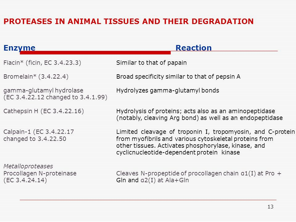 PROTEASES IN ANIMAL TISSUES AND THEIR DEGRADATION