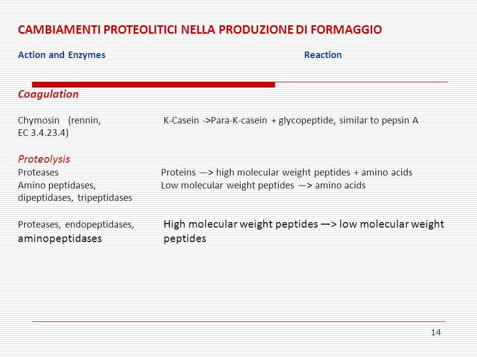 CAMBIAMENTI PROTEOLITICI NELLA PRODUZIONE DI FORMAGGIO