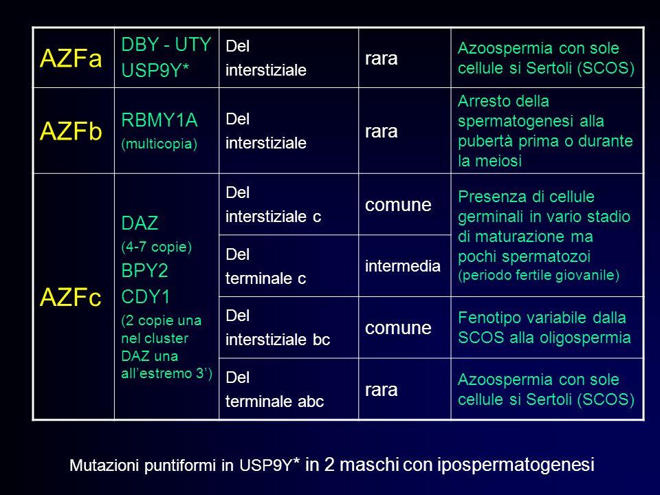 AZFa AZFb AZFc DBY - UTY rara USP9Y* RBMY1A DAZ BPY2 CDY1 comune Del