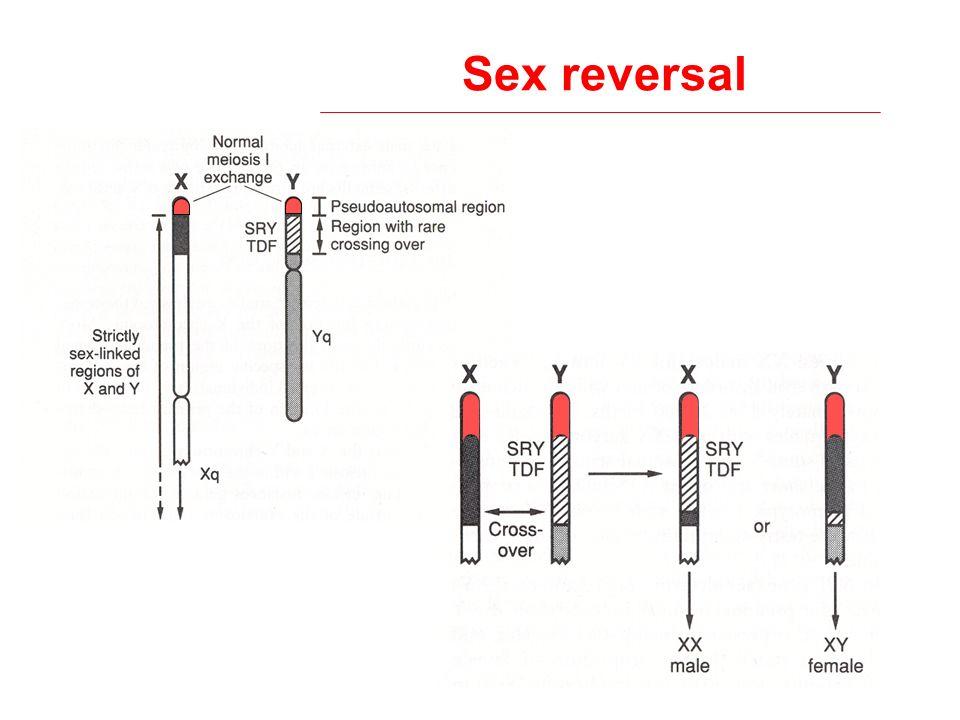 Sex reversal