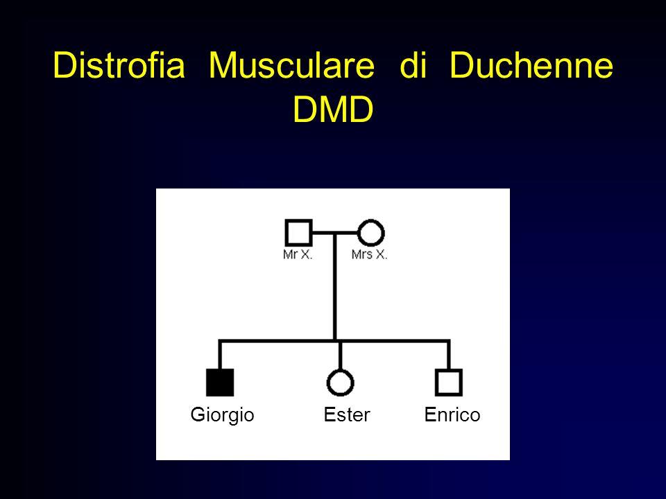 Distrofia Musculare di Duchenne DMD