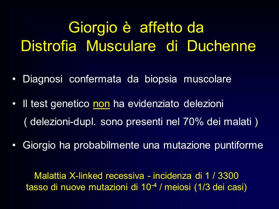 Giorgio è affetto da Distrofia Musculare di Duchenne