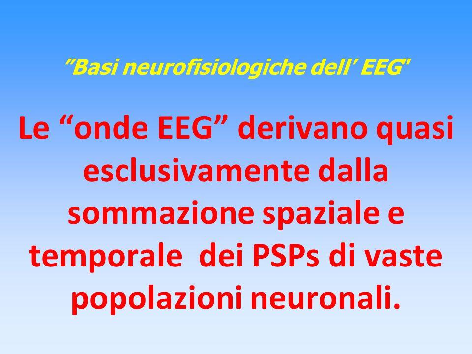 Basi neurofisiologiche dell' EEG