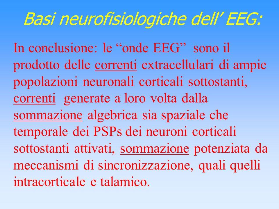 Basi neurofisiologiche dell' EEG:
