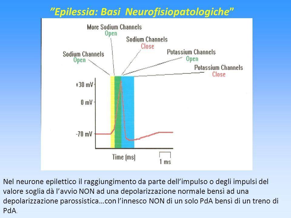 Epilessia: Basi Neurofisiopatologiche
