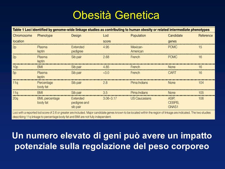 Obesità Genetica Un numero elevato di geni può avere un impatto
